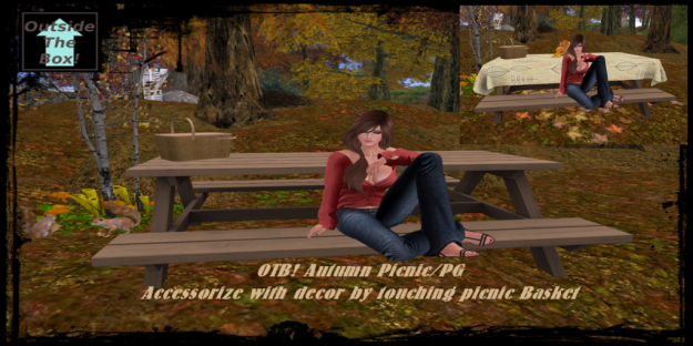 otb-autumn-picnic-plain_001